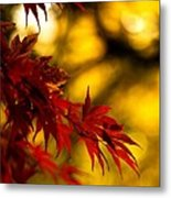 Graceful Leaves Metal Print