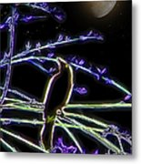 Grackle In The Willow Tree Metal Print