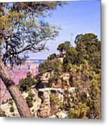 Grand Canyon 40 Metal Print