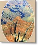 Grand Canyon 77 Metal Print