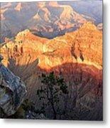 Grand Canyon 83 Metal Print