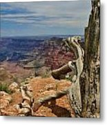 Grand Canyon And Dead Tree 1 Metal Print