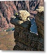 Grand Canyon.  Az Metal Print