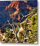 Grand Canyon Branches Metal Print