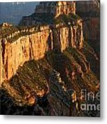 Grand Canyon Cape Royal Metal Print