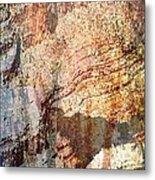 Grand Canyon Color Study Metal Print