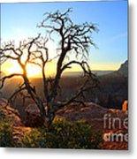 Grand Canyon Gathering The Light Metal Print