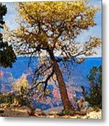 Grand Canyon National Park And Tree Metal Print