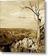 Grand Canyon Sepia Metal Print