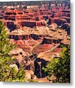 Grand Canyon Valley Metal Print