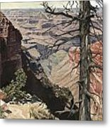 Grand Canyon View Weathered Tree Right Side  Metal Print