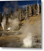 Grand Geyser Group Metal Print