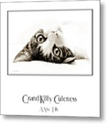 Grand Kitty Cuteness Miss Tilly Poster Metal Print by Andee Design