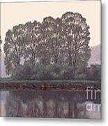 Grand River Sentinels Metal Print