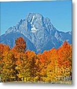 Grand Teton National Park 2 Metal Print