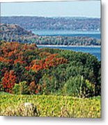 Grand Traverse Winery Lookout Metal Print