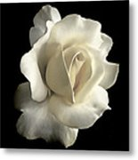Grandeur Ivory Rose Flower Metal Print