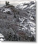 Grandfather Mountain's Linville Peak  Metal Print