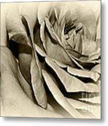 Grandma's Rose Metal Print