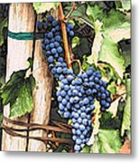 Grapes 1 Metal Print