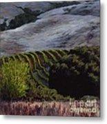 Grapes And Oaks Metal Print