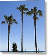 Graphic Image Of Palm Trees Blue Sky At Seaside Metal Print