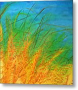 Grass Along The River Metal Print