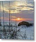 Grass And Mound Sunrise Metal Print