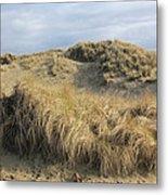 Grass And Sand Dunes Metal Print