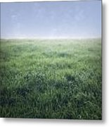 Grass And Sky  Metal Print