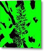 Grass Bloom Variations 6 Metal Print