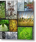 Grass Collage Variety Metal Print