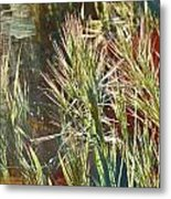 Grass In Sunlight Metal Print
