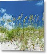 Grass On The Beach, Bill Baggs Cape Metal Print