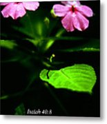 Grass Withers Flowers Fade Metal Print by Thomas R Fletcher