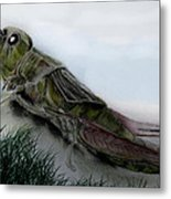 Grasshopper Resting Metal Print