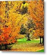 Grassy Autumn Road Metal Print