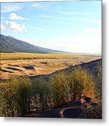 Grassy Dune Metal Print