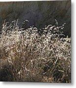 Grassy Knoll Metal Print