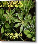 Grateful Dew Metal Print