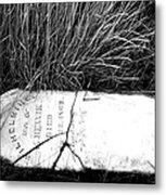 Grave Western Nevada  Metal Print