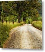 Gravel Road In The Smokies Metal Print by Andrew Soundarajan
