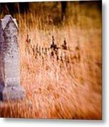 Graveyard 6792 Metal Print