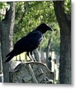 Graveyard Bird On Top Of A Tombstone Metal Print