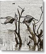 Gray Day At Whitewater Metal Print