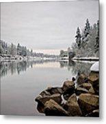 Gray Day In Lake Oswego Metal Print