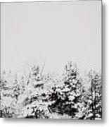Gray December Winter Snow On Trees Photograph Metal Print