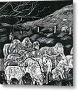 Grazing Sheep Metal Print