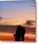 Grazing Under The Moon Metal Print