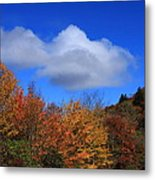 Great Balsam Mountains In The Fall Metal Print